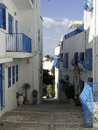 Tunis the city of in africa Royalty Free Stock Photo