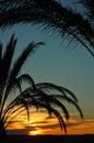 Tunisia sunset Royalty Free Stock Photo