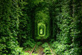 Tunnel d amour Images libres de droits