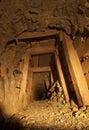 Tunnel della miniera di oro con i legnami Fotografia Stock