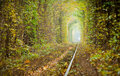 Tunnel of love Royalty Free Stock Photo