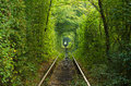 The tunnel of love on the railway.