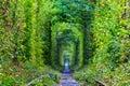 Tunnel of lovers scene ukraine green Royalty Free Stock Image