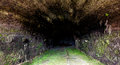 Tunnel in portobelo panama from fort colon here weapon were stored Stock Photography