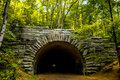 Tunnel to road to nowhere at lakeshore trailhead near lake fonta Royalty Free Stock Photo