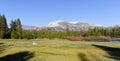 Tuolumne Meadows, Yosemite Park Royalty Free Stock Photo