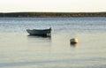 Turawskie Lake in the morning. Poland Royalty Free Stock Photo