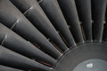 Turbine blades closeup of which drive air intake of jet engines Royalty Free Stock Image