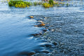 Turbulent river the beauty of nature on a sunny day Stock Photography