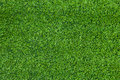 Turf background Royalty Free Stock Photos