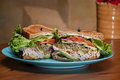 Turkey Avocado Sandwich on wheat Royalty Free Stock Photography