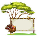 A turkey and a bee illustration of on white background Royalty Free Stock Images