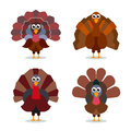 Turkey cartoon collection. Happy Thanksgiving celebration sign. Vector birds illustration