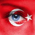 Turkey flag Royalty Free Stock Photo