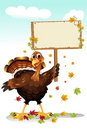 Turkey holding a sign Royalty Free Stock Images