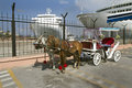 Turkey izmir such team with horses meet at the port of destination Stock Photos