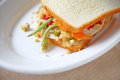 Turkey leftovers sandwich with copy space Royalty Free Stock Photo