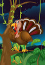 A turkey in the middle of the night illustration Royalty Free Stock Photography