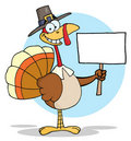 Turkey With pilgrim hat holding a blank sign Stock Image