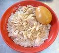 Turkey rice with stewed egg closeupn
