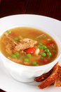 Turkey soup Royalty Free Stock Photo