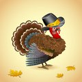 Turkey with Thanksgiving Hat Royalty Free Stock Images