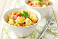 Turkey and vegetable stew two bowls of Royalty Free Stock Photography