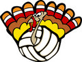 Turkey Volleyball Stock Image