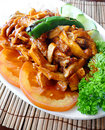 Turkish chicken dish Stock Images