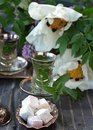 Turkish delight with mint tea Royalty Free Stock Images