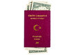 Turkish passport with u s dollars isolated Royalty Free Stock Photos