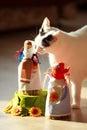 Turkish Van Cat Royalty Free Stock Photo