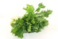 Turnip greens Stock Photos