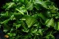 Turnip greens Royalty Free Stock Photo