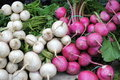 Turnips and beets. Royalty Free Stock Photos