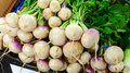 Turnips for sale