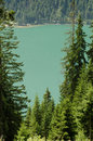 Turqoise mountain lake with firs in the tannheimer tal in tirol austria Royalty Free Stock Photography