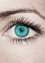 Turquoise Eye - Beautiful, Feminine Royalty Free Stock Image