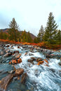 Turquoise mountain river the against mountains with trees Stock Photo