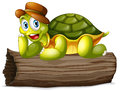 A turtle above a log illustration of on white background Royalty Free Stock Image