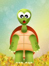 Turtle cartoon illustration of animal Royalty Free Stock Images