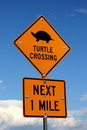 Turtle Crossing Sign Royalty Free Stock Images