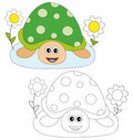 Turtle and flowers Royalty Free Stock Images