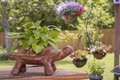 Turtle planter mexican garden pottery flowers hanging plants back yard Royalty Free Stock Photo