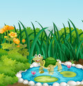 A turtle in the pond with waterlilies illustration of Stock Photography