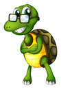 A turtle standing with an eyeglass illustration of on white background Stock Images