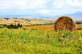 Tuscan countryside view of tuscany italy with hay bale Stock Photo