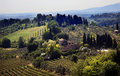 Tuscan Farm Vineyard San Gimignano Tuscany Italy Royalty Free Stock Photo