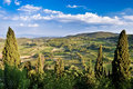 Tuscan fields, vineyards and woods Royalty Free Stock Image