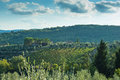 Tuscan hillside vineyard early autumn with houses landscape and rolling hills and stone masonry placed in the greve in chianti Stock Photos
